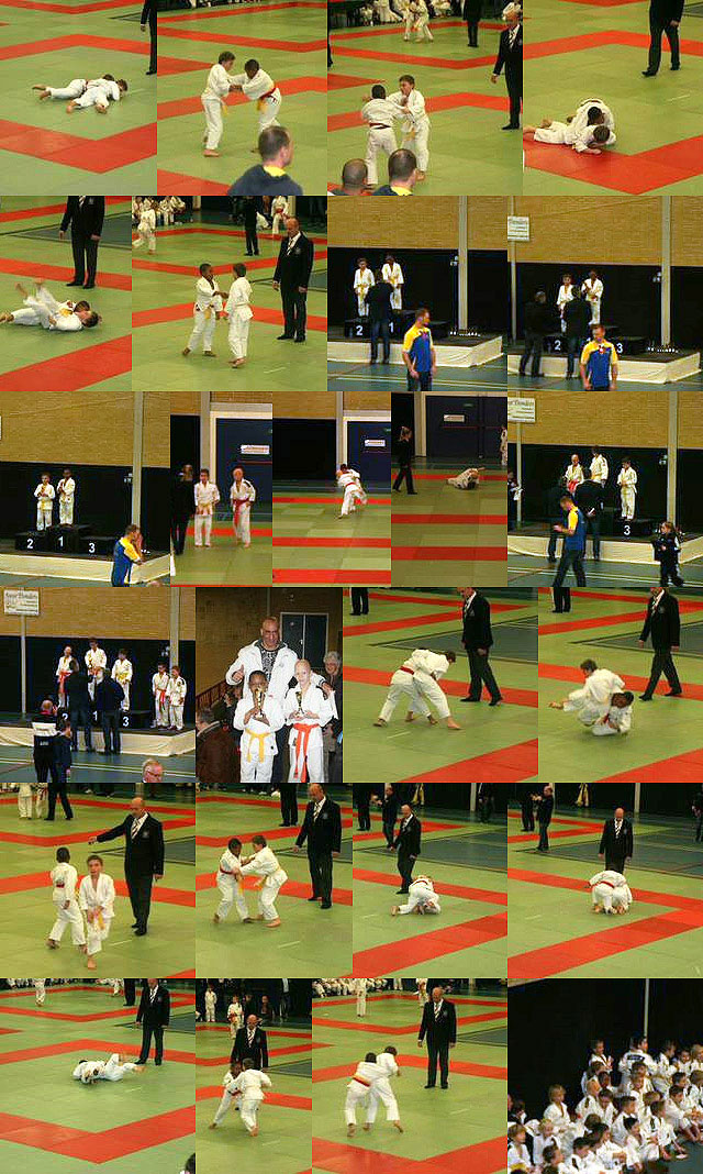judoStapIn